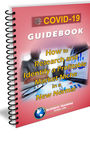 Photo of Guidebook-How to Research and Identify aProfitable Market Niche in a New Normal